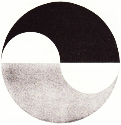 Yang-yin horizon